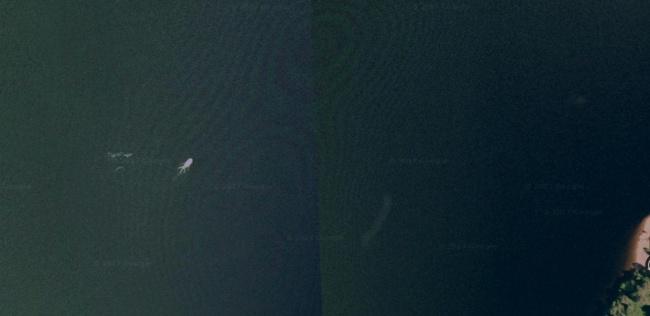 Lencsevégre kapott Loch Ness-i szörny