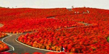 Csodálatos helyek a Földön Facebook