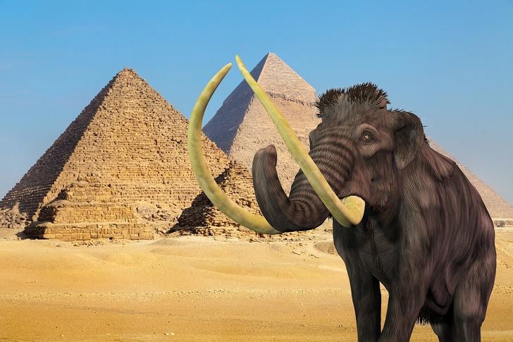 Mamutok a piramisokkor