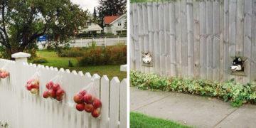 Kedves szomszédok Facebook