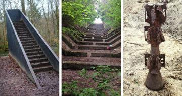 Erdőben talált rejtélyes dolgok