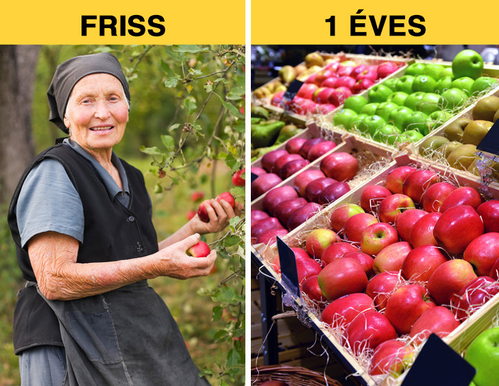 Friss vs 1 éves alma