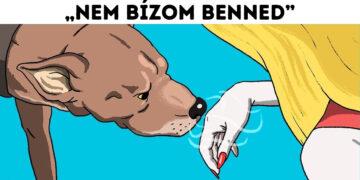 Kutyák és a rossz emberek