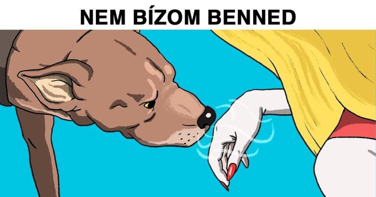Kutyák felismerik a rossz embereket