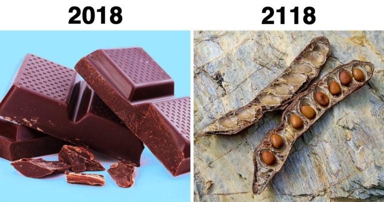 100 év múlva eltűnő dolgok
