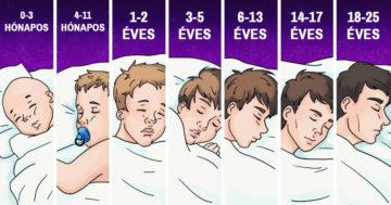 Alvásigény az embereknél