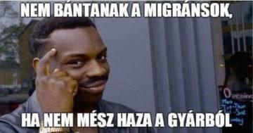 Túlóratörvény mémek