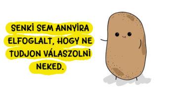 Bölcs krumpli gondolatok