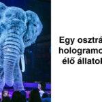 Osztrák cirkusz hologram állatok