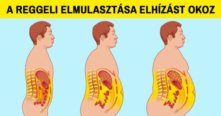 Egészségügyi problémák