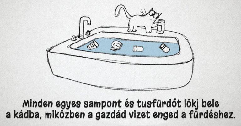 Hogyan legyünk macskák