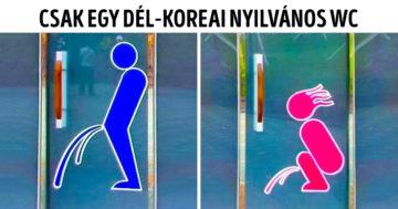 Dél koreai érdekesség