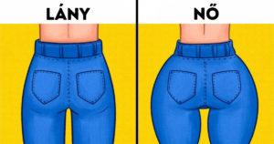 Női férfi különbségek