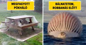 Ausztrália veszélyes hely