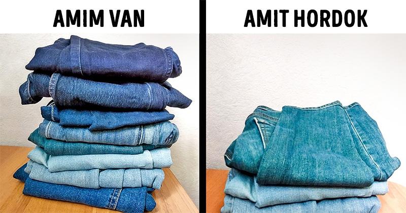 Farmer Amim Van Vs Amit Hordok