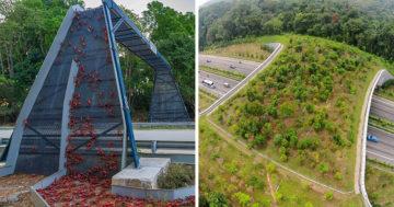 Környezetvédő mérnöki megoldások