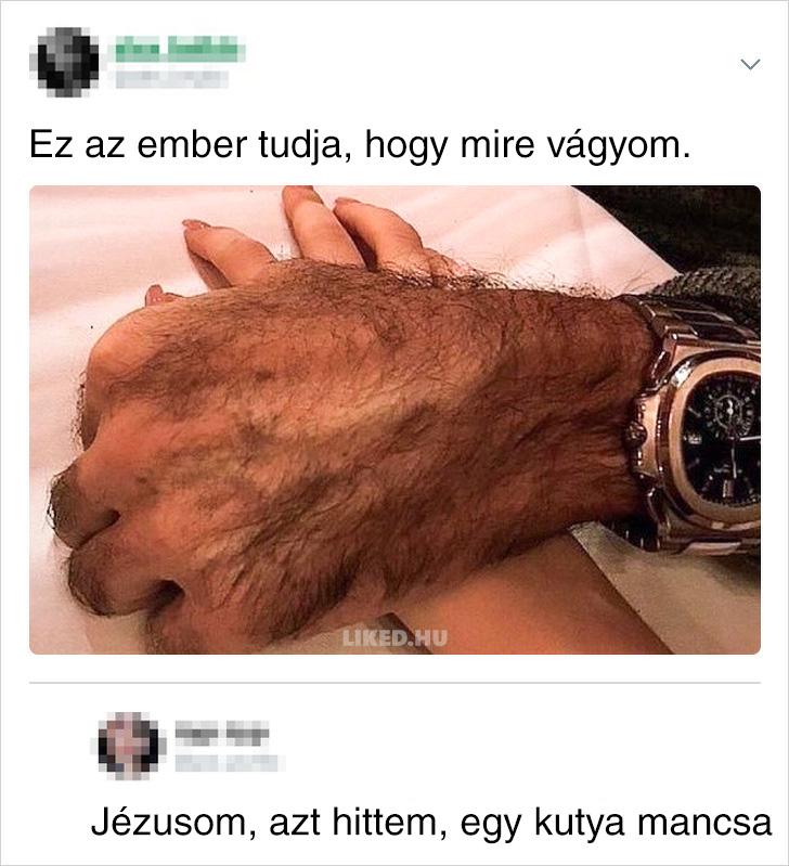 Kutya mancsa