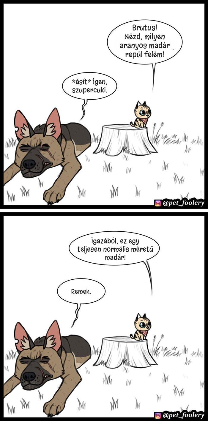 Pixie es Brutus kepregeny 2.1