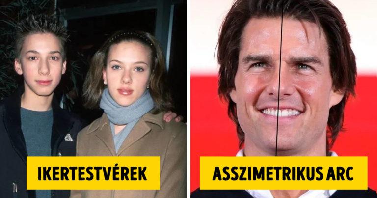 Tények a Hollywoodi hírességekről
