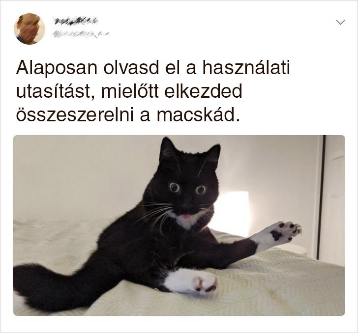 Macska hasznalati utasitas