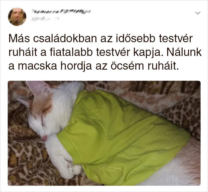Macska orokolt ruha
