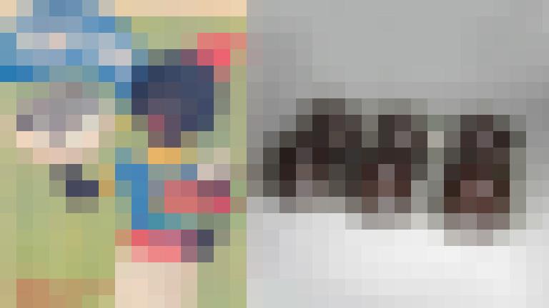 Negercsok pixel