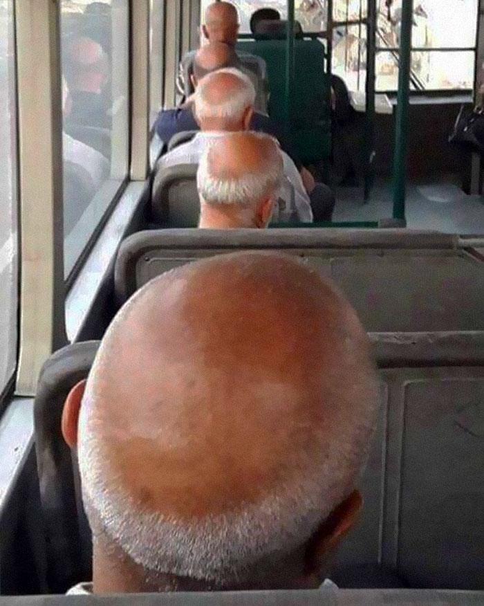humans of trolleybuses 315 5dc2850fc16ec 700