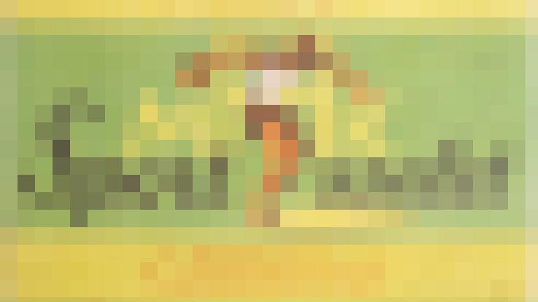 sport szelet pixel