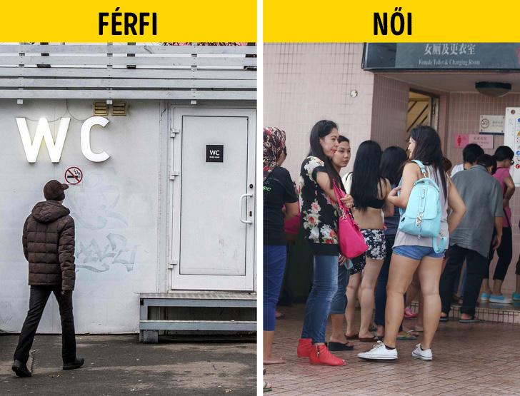 Ferfi vs noi wc