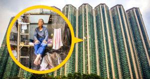 Hongkongi hangyaboly