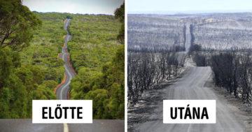 Ausztrál erdőtüzek előtte utána képek