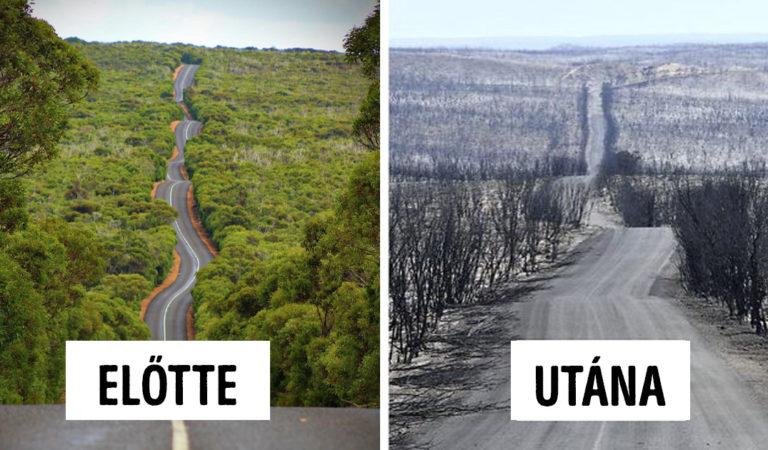 19 akkor és most fotó, ami megmutatja, mekkora pusztítást végzett Ausztráliában a tűz