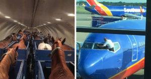 Repüléssel kapcsolatos meglepetések