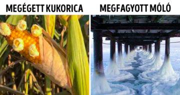 Szélsőséges természeti jelenségek
