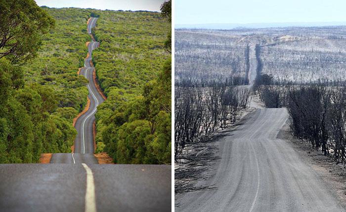 australia bushfires before after photos 23 5e15e3417506e 700