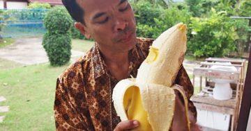 Szokatlan dolgok Thaiföldről