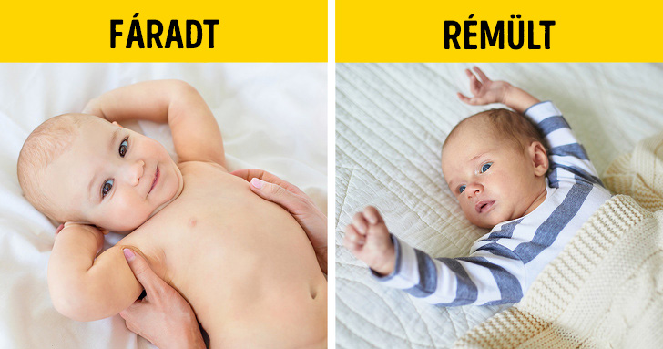 Kisbabák jelzései