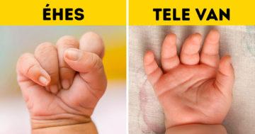 Kisbabák jelzéseinek megértése