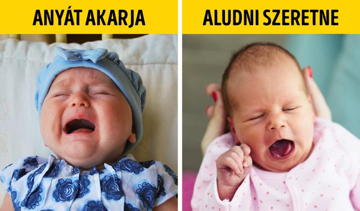 Kisbabák reakciói
