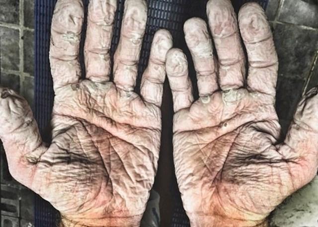 evező keze