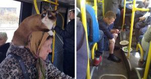 Különleges emberek tömegközlekedés