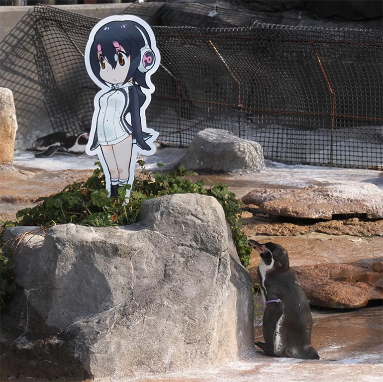 Anime pingvin