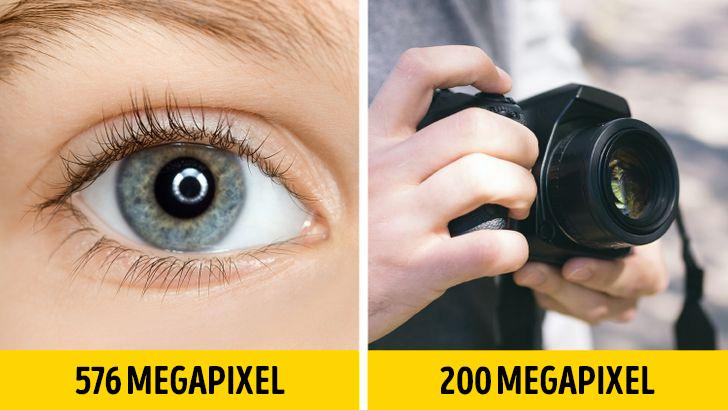Emberi szem megapixel