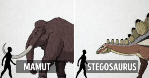Dinoszauruszok és az emberek