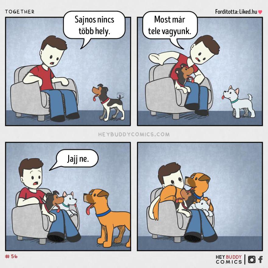 Nincs tobb hely kutyak
