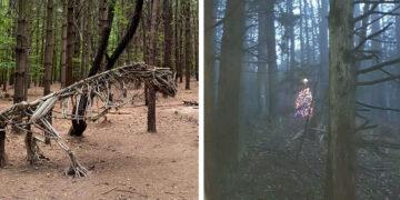 Váratlan meglepetések az erdőben