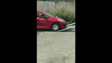 Autovontatas fail
