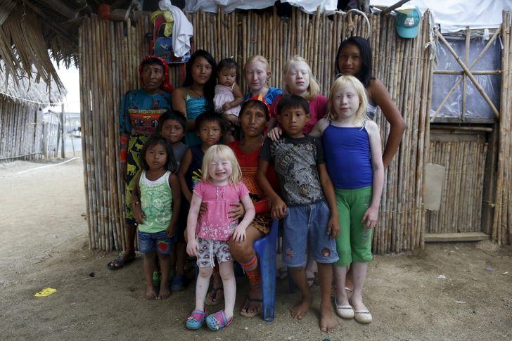 Kuna törzs albínó