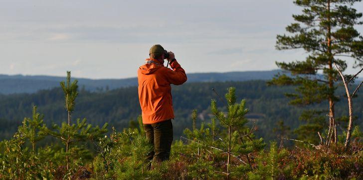 svédország természet