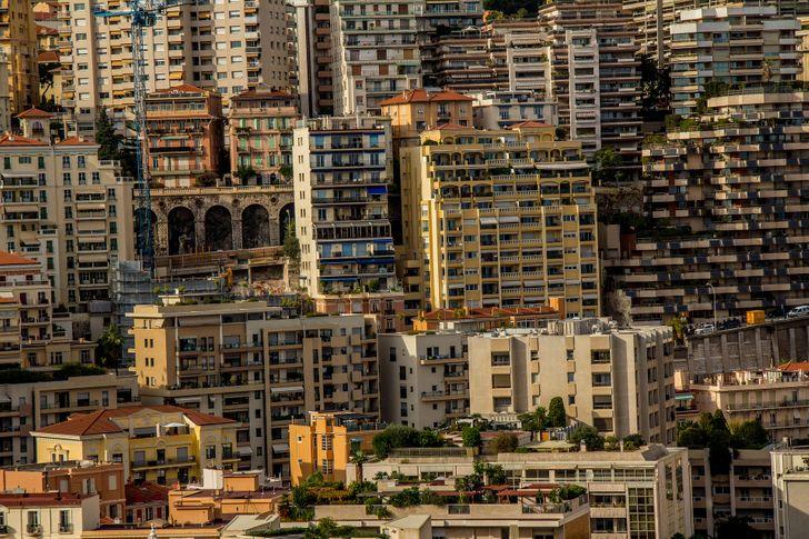 Monaco dzsungel